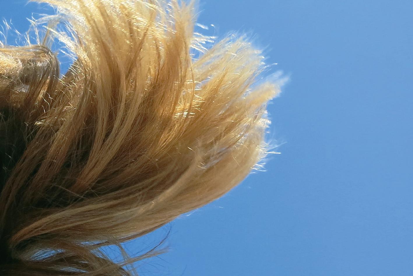 Der Welt-Wind-Tag