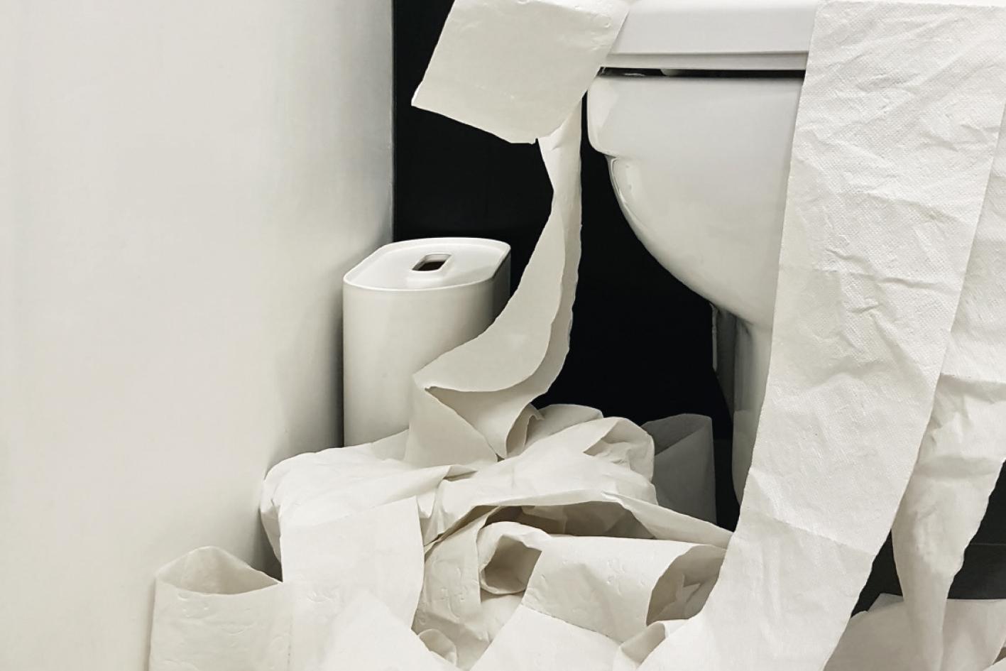 Tag des Toilettenpapiers
